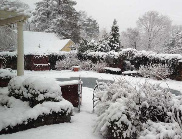 Winter-Montclair-Landscape