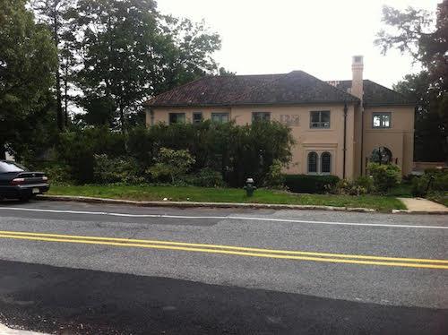 pruning in landscape design