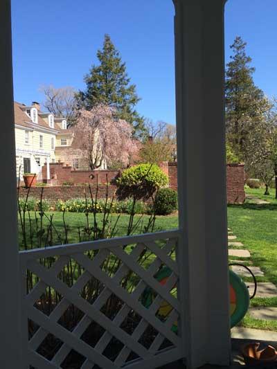 Backyard Landscape Montclair