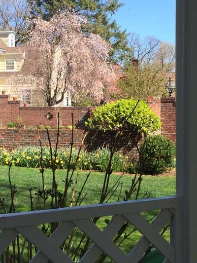 Garden Wall and Flower Beds