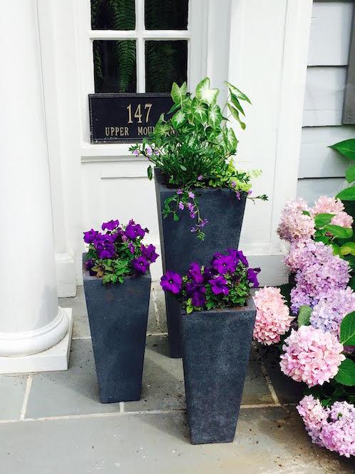 Annual flowers arranged on a Montclair NJ porch