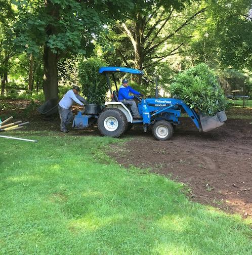 A Montclair, NJ landscape designer starts a gardening project