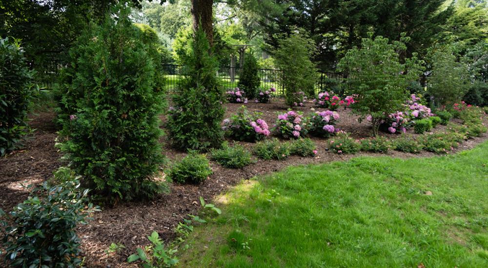 Choosing flowers for full sun area of garden