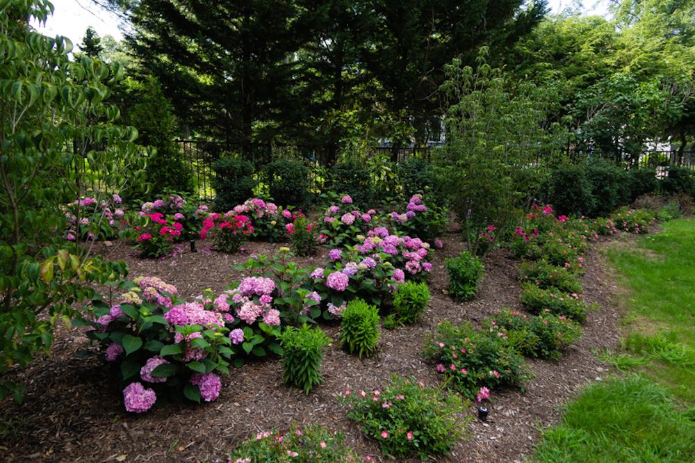 Planning out garden design