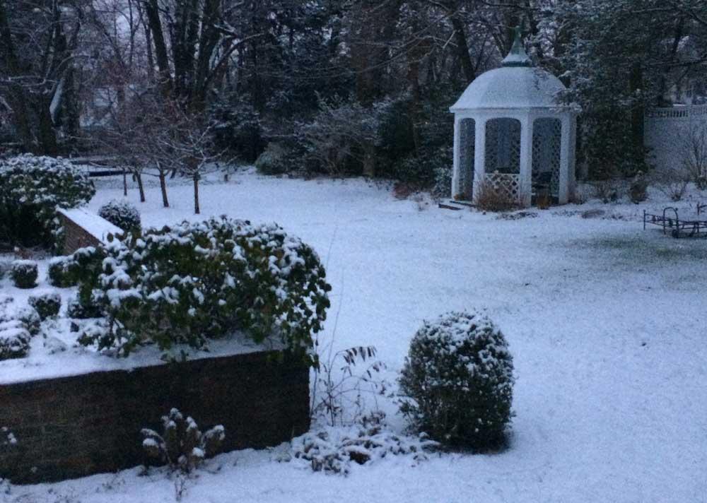 Christmas Garden in Montclair NJ