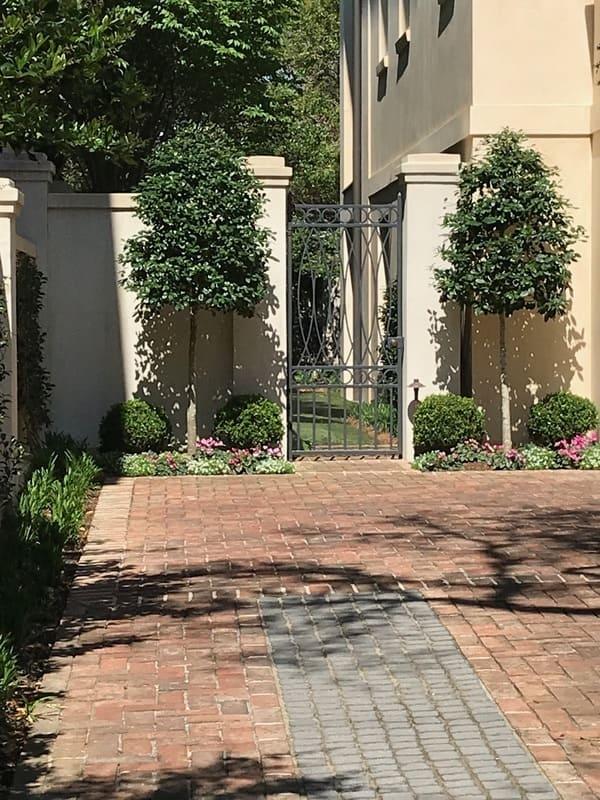 Twig and vine garden club
