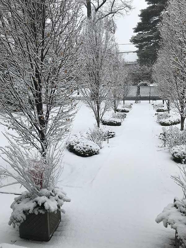 Winter Garden Path